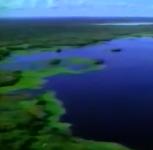 Itaúnas: desastre ecológico